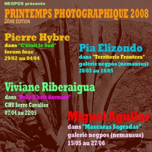 PRINTEMPS PHOTOGRAPHIQUE N°2 – 2008 –