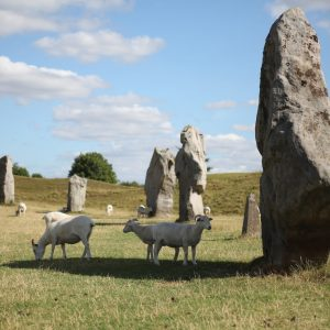 Ben Graville – Avebury stone circle, England